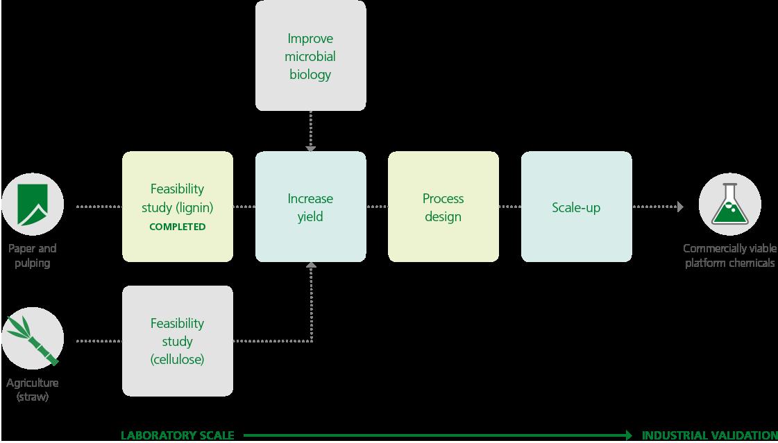 Biome-development-plan (1)